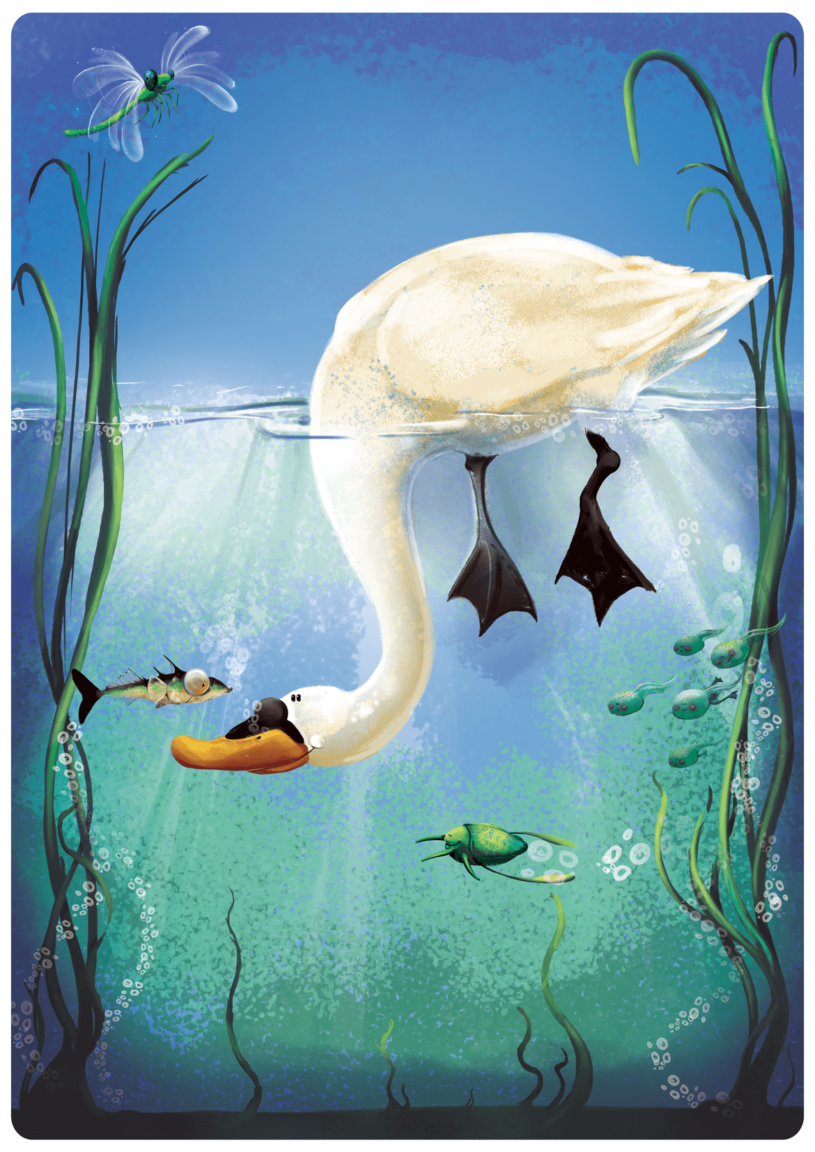 Rowena Aitken Illustration | Animals | Swan
